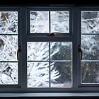 winter window by James Calvey