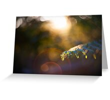 fern scroll Greeting Card