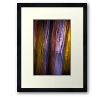 The Recollection Framed Print