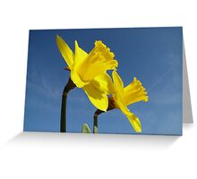 The Yellow Trumpeteers Greeting Card
