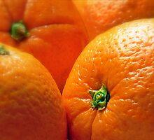 Orange You Glad? by paintingsheep