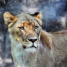 The Lioness by venny