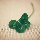 four leaf clover by Catherine  Regan