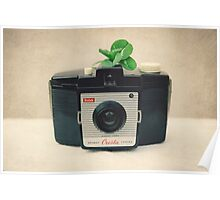 kodak  brownie and four leaf clover Poster