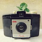 Kodak Brownie and four leaf clover 2 by Catherine  Regan