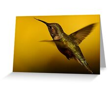 A HUMMINGBIRDS LIFE Greeting Card