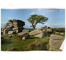 Holwell Tor on Dartmoor Poster