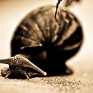 Happiness is...use slow life...SOLD, Got Featured Work by Kornrawiee