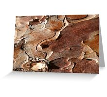 topographyBark Greeting Card