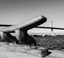 Big Bridge, Little Bridge by csk01