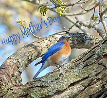 Mother's Day Greeting Card by Susan S. Kline