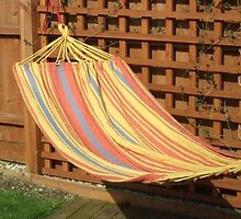 Orange 2m x 1m Swing Hammock by corrinla