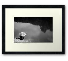 Fishing for Lunch Framed Print
