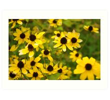 A Patch of Yellow Art Print