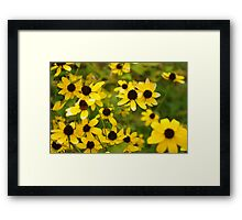 A Patch of Yellow Framed Print