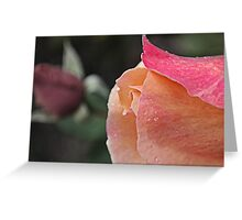 They Rose Together Greeting Card
