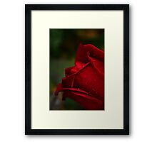 Red Tears Framed Print
