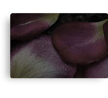 Even The Most Beautiful Petals Must Fall Canvas Print