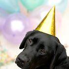 Happy Birthday by Kate Brook