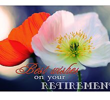 Best wishes on your retirement - poppies by Micklyn2