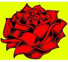 Marigold/rose Photographic Print