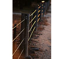 Fences Of Light Photographic Print