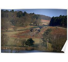 Bradgate Park Leicestershire England Poster