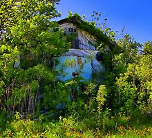 Abandoned Building - Perrin Airforce Base - Sherman, Texas, USA by aprilann