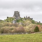 Corfe Castle by Chris Day
