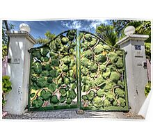 Sea grape at the front gate on Eastern Road in Nassau, The Bahamas Poster