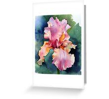 Afternoon Delight Iris Greeting Card