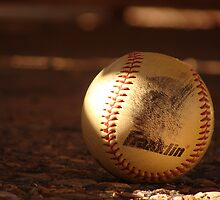 Baseball Season by dsiebrecht2