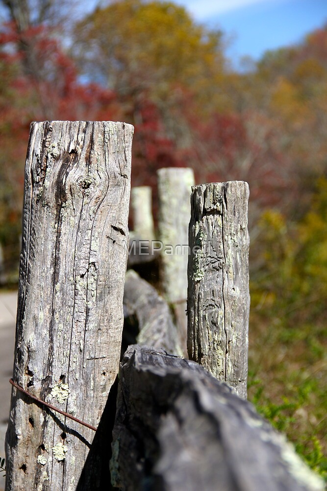 On the fence by MEParnell