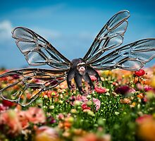 Chimp Fly by GolemAura