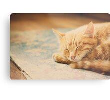 Little Red Kitten Sleeping On Bed Metal Print
