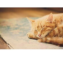 Little Red Kitten Sleeping On Bed Photographic Print