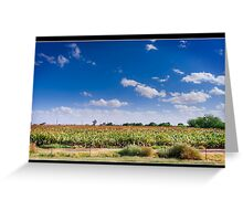 Maricopa Cornfield Greeting Card