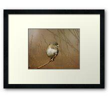 Little Junko Framed Print