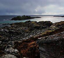 Rhuba Phoil ~ Isle Of Skye by caledoniadreamn