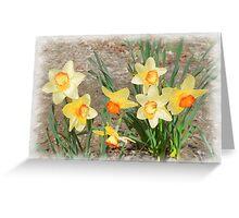 Spring, Take a Bow Greeting Card