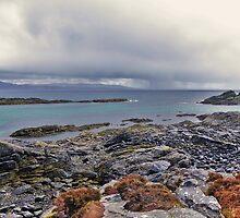 Seal Island ~ Rhuba Phoil ~ Isle Of Skye by caledoniadreamn