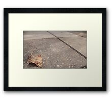 Brown leaf on the patio Framed Print