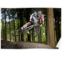 Dan Coulson, Forest of Dean Poster