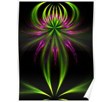 Lily of Apophysis Poster