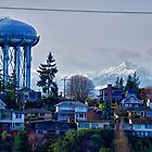 View from Magnolia (Northwest Seattle) by Gary Rea