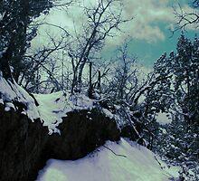 Blue Branches by ekingrn