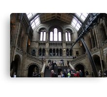 Inside the Natural History Museum in London Canvas Print