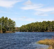 New England Pond by joycemlheureux