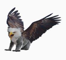 Ameristralia Eaglekoala (Solo) by HeyHaydn