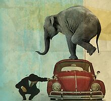 Looking for Tiny _ elephant on a red VW by vinpez